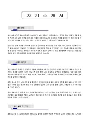 네트워크 구축, 관리 자기소개서_경력 상세 미리보기 1페이지