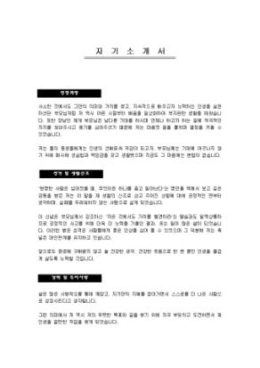 영업 자기소개서(혼다코리아)_경력 상세 미리보기 1페이지