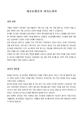 예금보험공사 자기소개서 상세 미리보기 1페이지