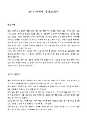 소니 마케팅 자기소개서 상세 미리보기 1페이지