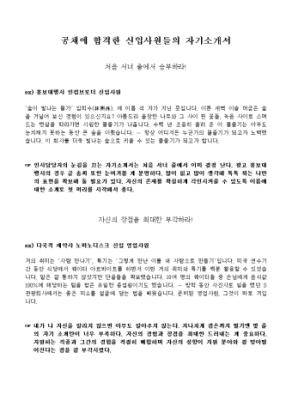 공채 합격 자기소개서 상세 미리보기 1페이지