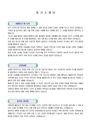 건축기사 자기소개서_신입 상세 미리보기 1페이지