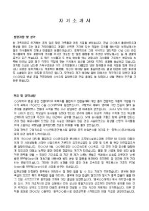토목기사 자기소개서(도로공사)_경력 상세 미리보기 1페이지