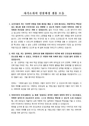 성장과정 자기소개서 샘플(성실 강조)모음 상세 미리보기 1페이지