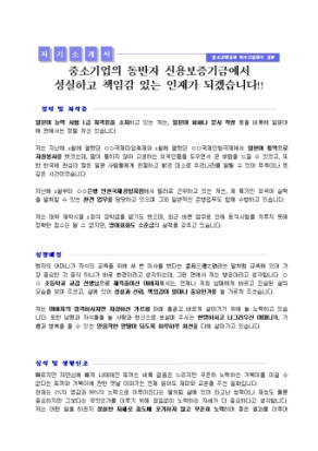 신용보증기금 자기소개서_경력 상세 미리보기 1페이지